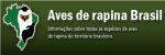 Aves de Rapina. Site que trata dos rapinantes brasileiros (Portuges).