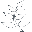 logo Birding